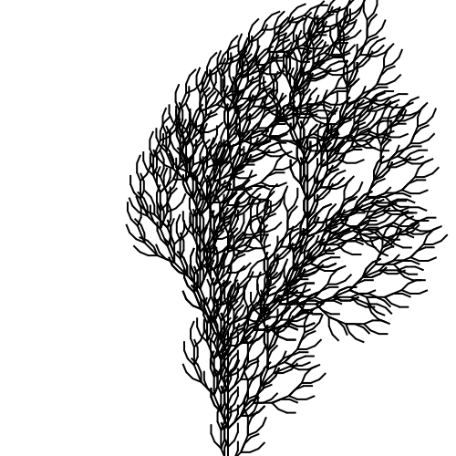 Bush Drawing